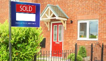 Property Market Trends